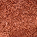 mulch 089
